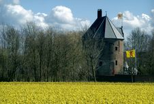 Free Mediaeval Castle And  Flowering Daffodils Royalty Free Stock Photography - 8298127