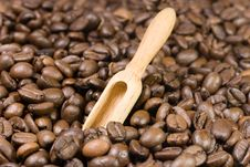 Free Scoop Among Coffee Beans Royalty Free Stock Photos - 8298268