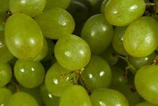 Free Grape Stock Photos - 8298873