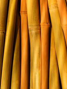 Free Abstract Background From Bamboo Stalks Royalty Free Stock Image - 8299256
