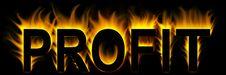 Free Profit Royalty Free Stock Photo - 8299995
