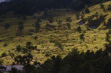 Free Sunlit Hillside Beside Road Stock Photo - 82911940