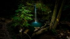 Free Waterfall In Forest  Royalty Free Stock Photography - 82913377