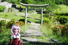 Free Doll In Garden Royalty Free Stock Photo - 82913405