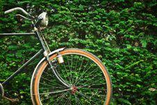 Free Black Beach Cruiser Bicycle Near Green Hedge During Daytime Stock Photos - 82931773