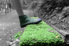 Free Human Foot And Grass Field Selective Color Footage Royalty Free Stock Images - 82931959