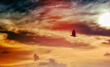Free Black Bird Flying Under Black And White Clouded Sky At Daytime Royalty Free Stock Images - 82932039