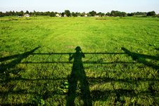 Free Shadow Of Farmer Inspecting Crop Royalty Free Stock Images - 82932199