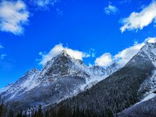 Free Gray Rocky Mountain Beside Pine Tree Under Blue Cloudy Sky During Day Time Stock Photography - 82933512
