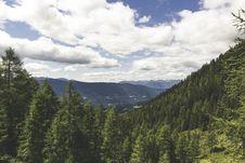Free Pine Tress On The Mountain Landscape Photo During Daytime Stock Photos - 82933873