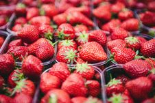 Free Strawberries On Clear Plastic Containers Stock Photos - 82934263