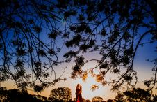 Free Silhouette Photo Of 2 Person Surrounded Trees During Dawn Royalty Free Stock Image - 82936826