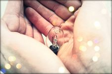 Free Centered Clear Bulb On Human Hand Royalty Free Stock Photo - 82937055