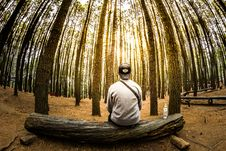 Free Man Siting On Log In Center Of Forest Panoramic Photo Stock Photo - 82945640