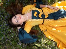 Free Yellow Dressed Woman On Green Leafed Plant Royalty Free Stock Image - 82947156