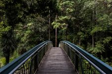 Free Bridge In Forest Royalty Free Stock Image - 82947516