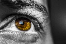 Free Brown Eye On Black And White Face Royalty Free Stock Photos - 82948038