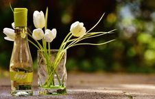 Free Clear Glass Hugo Bottle With White Flowers Royalty Free Stock Images - 82948469