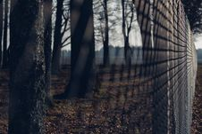 Free Chain Link Fence With Trees In Background During Twilight Stock Photography - 82949112