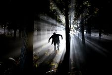 Free Silhouette Of Man Running On Forest Royalty Free Stock Photo - 82949725