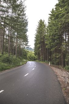 Free Pathway Road Beside Trees Stock Photos - 82949943