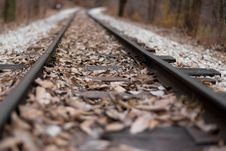Free Railroad Tracks With Leaves Stock Images - 82950434