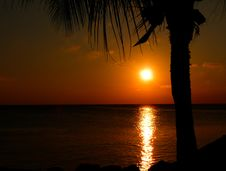 Free Sunset In Barbados Stock Photography - 82950702