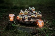 Free Cupcakes And Candles On Stump Surrounded By Moss Stock Photography - 82951942