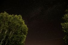 Free Starry Skies Against Tree Tops Royalty Free Stock Photos - 82952518