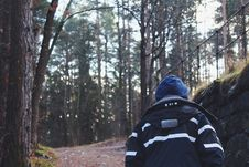 Free Back View Of Man In Forest Stock Photos - 82952613