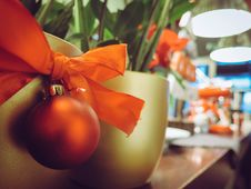Free Close-up Of Christmas Plant Stock Photos - 82953173