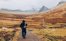 Free Hiker On Path In Mountains Royalty Free Stock Images - 82953749