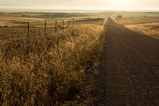 Free Country Road In Fields Royalty Free Stock Photos - 82955408