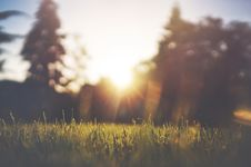 Free Sunset Over Grassy Field In Countryside Stock Photo - 82957470