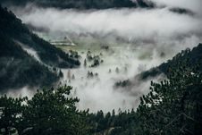 Free Fog Over Forest Valley Royalty Free Stock Image - 82957596