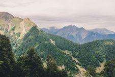 Free Alpine Forest Stock Photo - 82957940