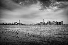 Free Greyscale Photography Of Flock Of Birds On Ocean Under Cloudy Sky Far From The City Royalty Free Stock Photography - 82958397