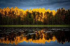 Free Autumn Forest Reflected In Lake Royalty Free Stock Image - 82959176