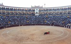 Free Bullfight Arena Stock Photos - 82959893