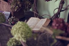 Free Open Book In Room With Flowers Royalty Free Stock Photography - 82960897