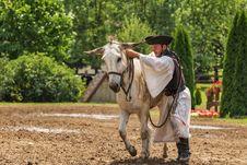 Free Man Mounting A White Donkey Royalty Free Stock Photography - 82962147