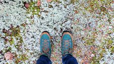 Free Man Wearing Teal And Brown Lace Up Sneakers Royalty Free Stock Images - 82962539