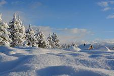 Free Snow Flakes On Ground Stock Photos - 82962623
