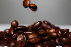 Free Coffee Beans Falling Royalty Free Stock Photos - 82963968