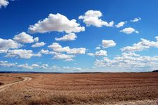Free Brown Field And Blue Sky Royalty Free Stock Photos - 82964828