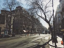 Free Urban Street In Winter With Bare Trees  Royalty Free Stock Image - 82965666