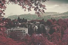 Free City Buildings Surrounded Maroon Leaved Forest During Daytime Stock Photo - 82976920