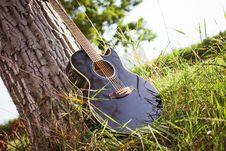 Free Black Acoustic Cutaway Guitar On Tree Royalty Free Stock Photos - 82977778