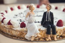 Free Bride And Groom On Cake Stock Photography - 82978242