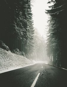 Free Empty Road Through Snowy Forest Royalty Free Stock Image - 82978476